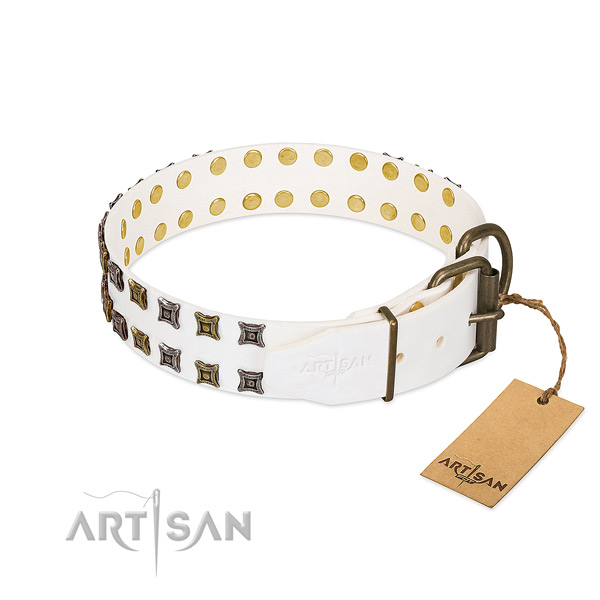 Natural leather collar with unique adornments for your canine