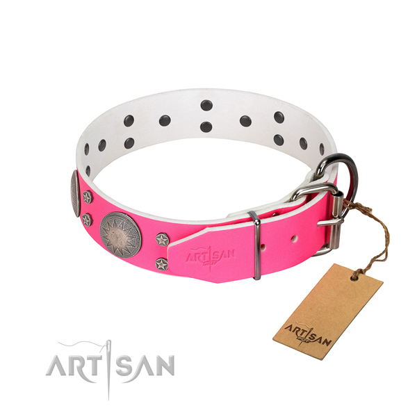 Daily use full grain leather dog collar with stylish design decorations