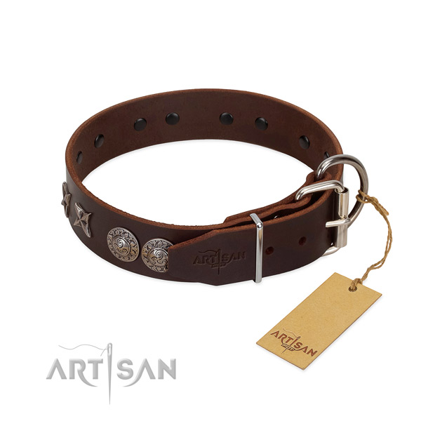 Everyday walking dog collar of natural leather with unusual studs