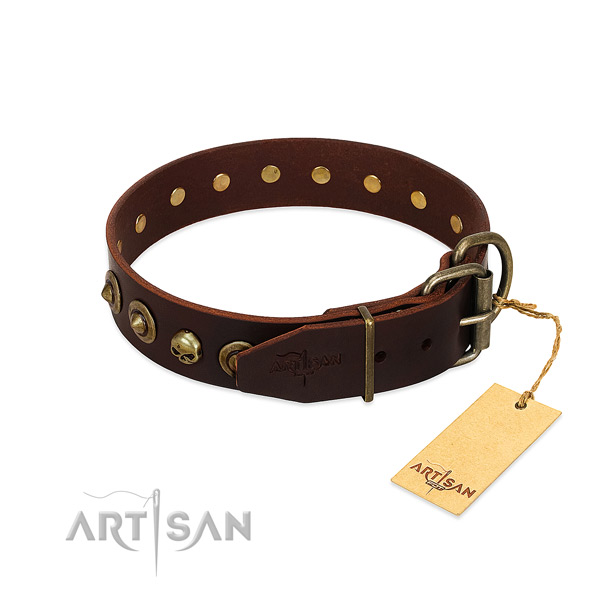 Genuine leather collar with fashionable adornments for your pet