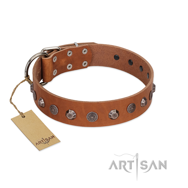 Stylish design full grain natural leather dog collar