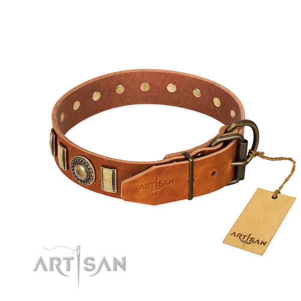 Amazing leather dog collar with durable hardware