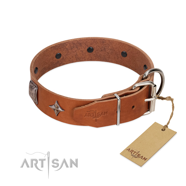 Flexible full grain genuine leather dog collar with amazing adornments