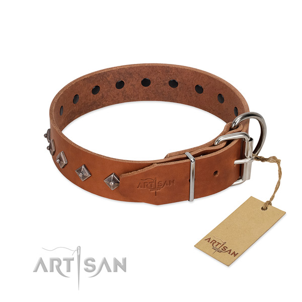 Leather dog collar with inimitable embellishments for your pet