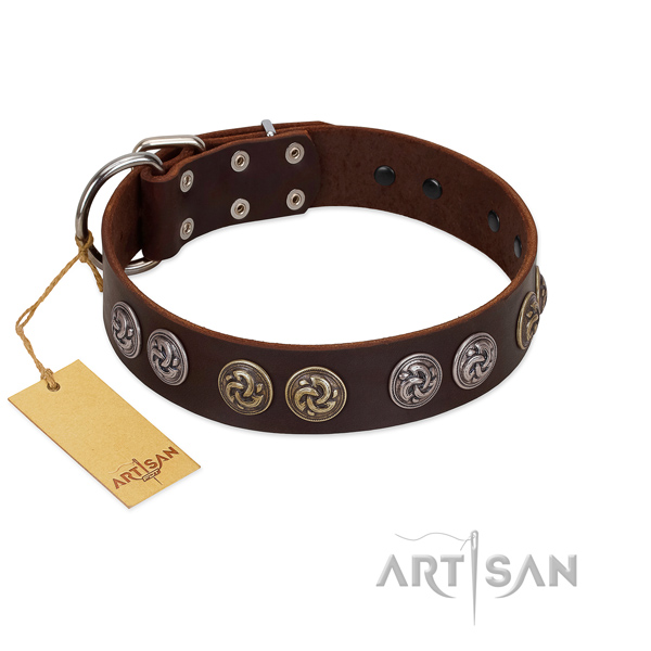 Corrosion proof hardware on significant full grain leather dog collar