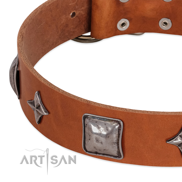 Soft to touch natural leather dog collar with reliable fittings