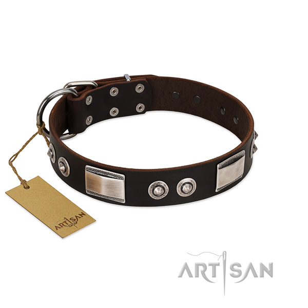 Handmade collar of natural leather for your dog