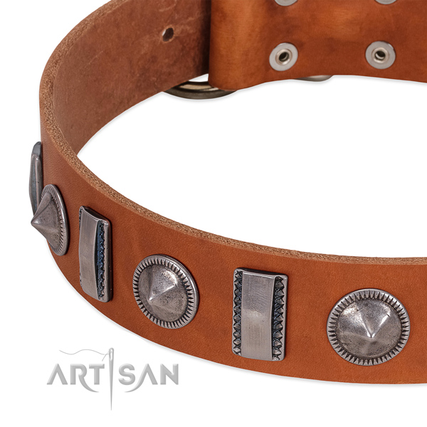 Impressive decorated full grain leather dog collar for comfy wearing