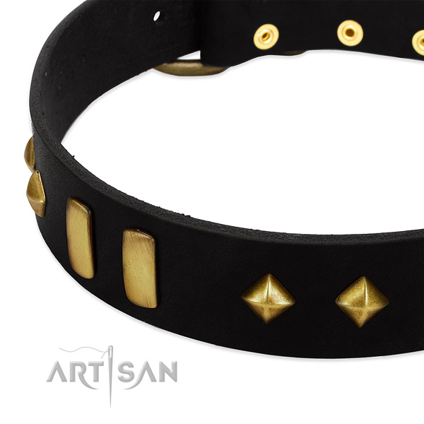 Flexible genuine leather dog collar with awesome studs