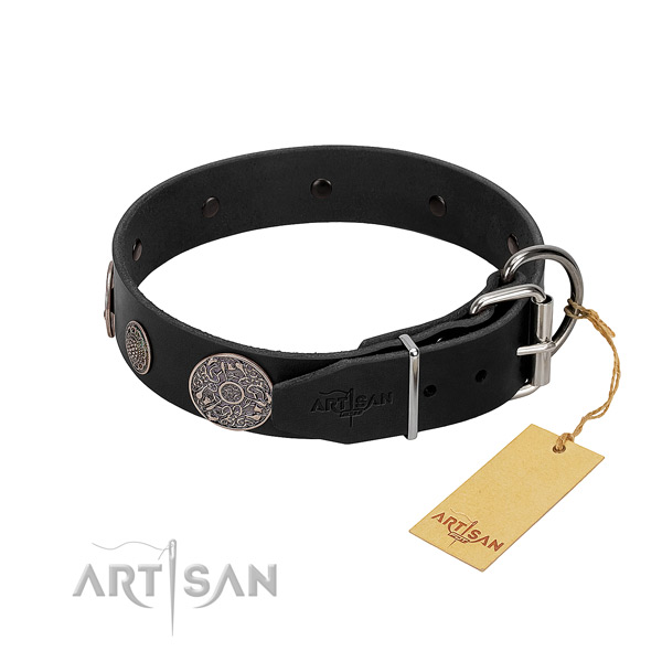 Rust resistant hardware on leather dog collar
