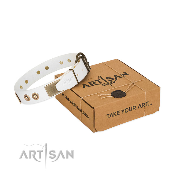 Rust resistant decorations on full grain genuine leather dog collar for your canine