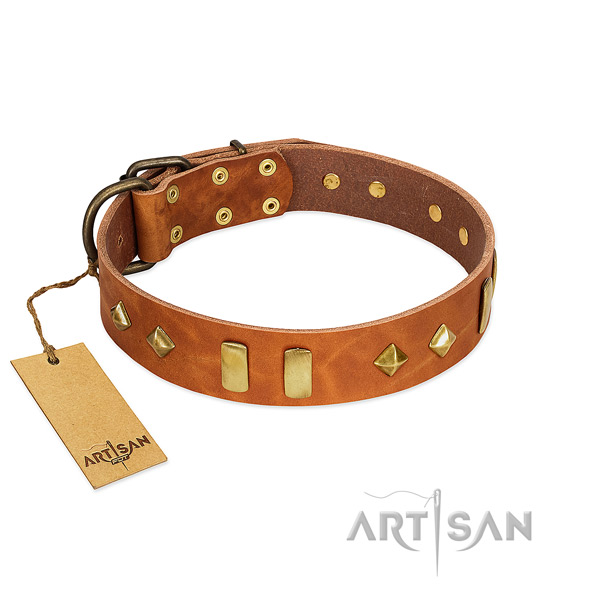 Everyday walking soft to touch full grain genuine leather dog collar with adornments