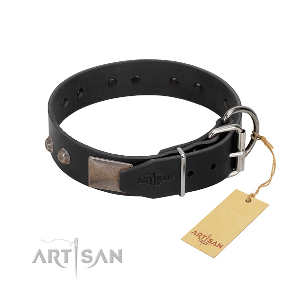 Exquisite full grain leather dog collar for walking in style your four-legged friend