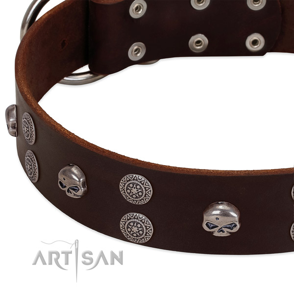 High quality full grain genuine leather dog collar with exceptional embellishments
