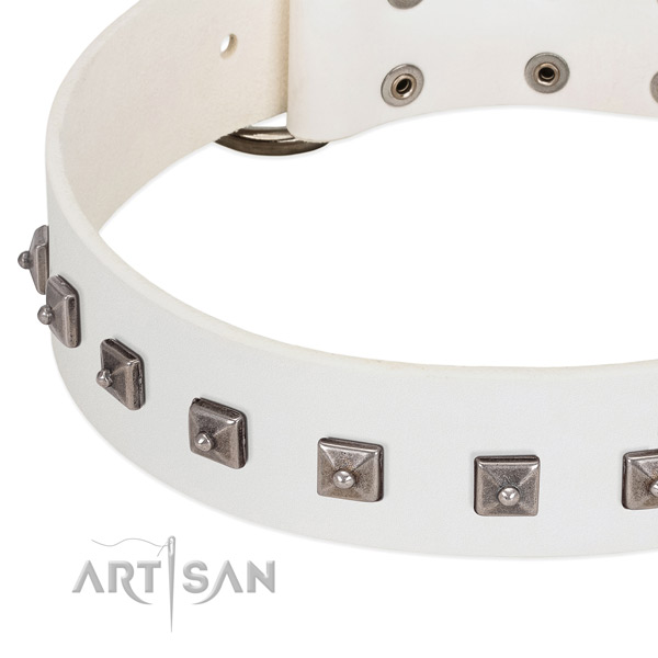 Top rate full grain natural leather dog collar with extraordinary adornments