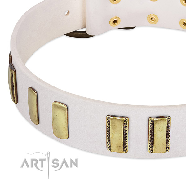 Soft to touch genuine leather dog collar with embellishments for handy use