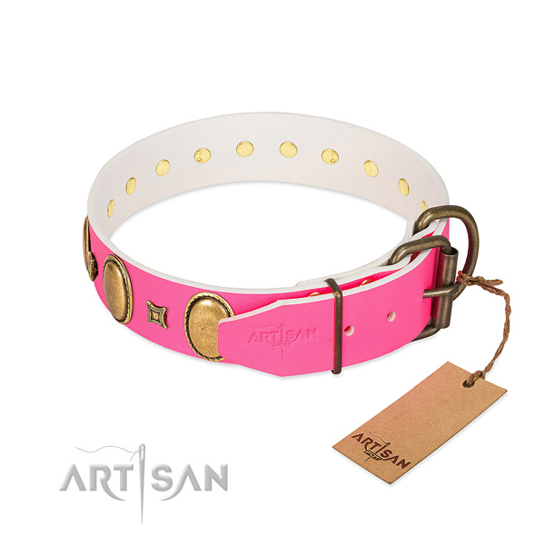 Strong leather collar crafted for your dog