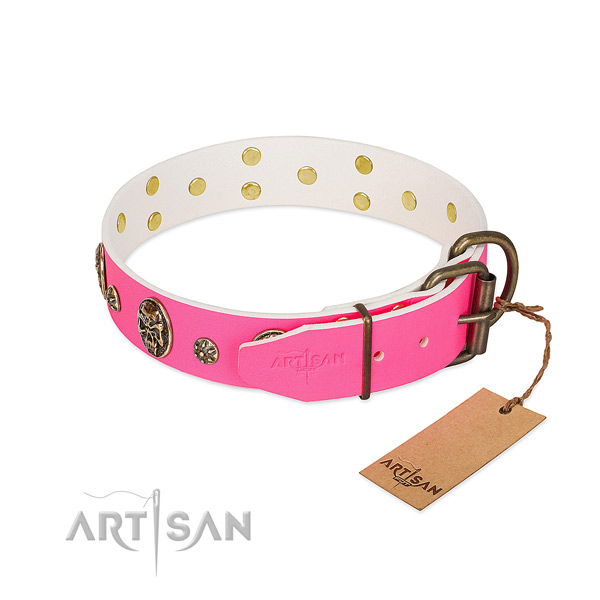 Corrosion resistant fittings on natural leather collar for basic training your dog