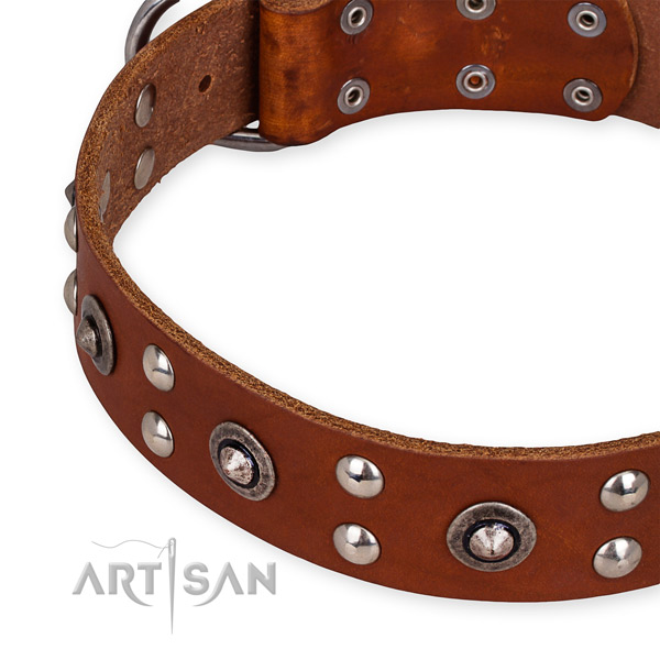 Full grain genuine leather collar with reliable fittings for your handsome dog