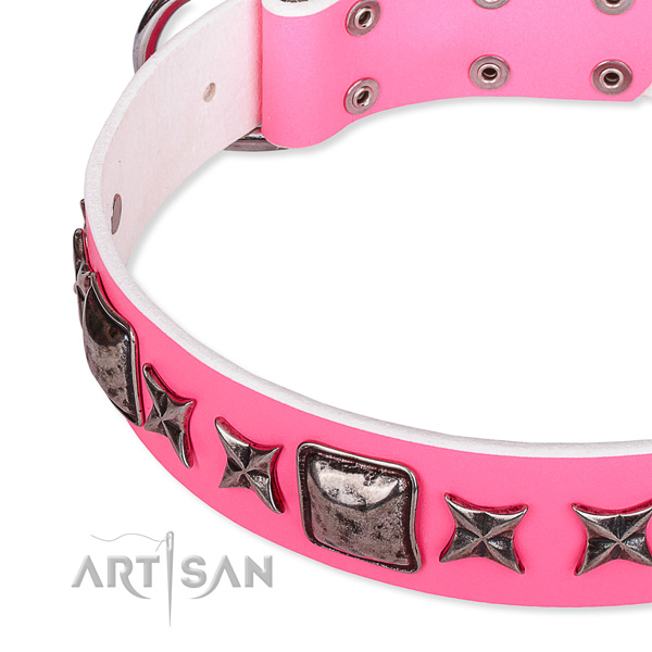 Comfortable wearing adorned dog collar of reliable full grain leather