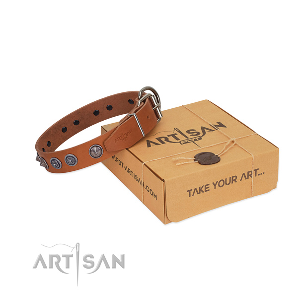 Strong buckle on leather dog collar for stylish walking your dog