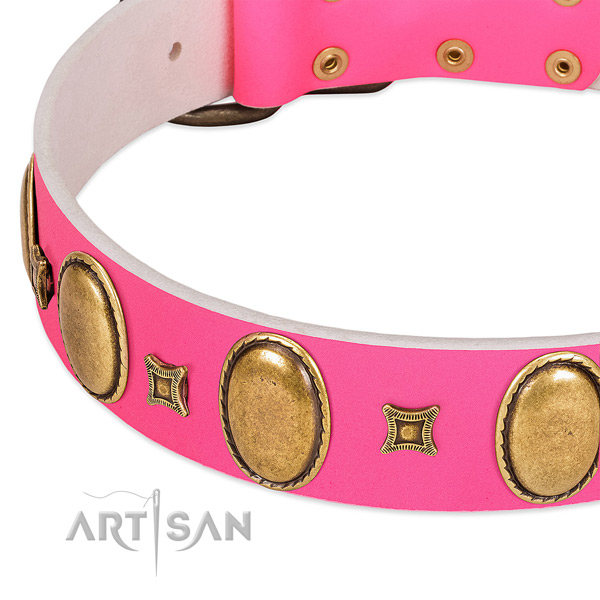 Reliable leather dog collar with decorations for everyday walking