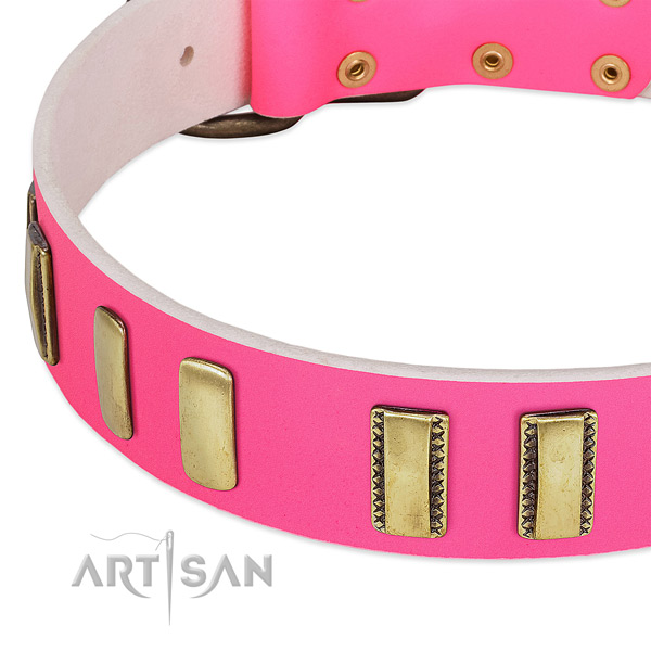 Flexible full grain genuine leather dog collar with adornments for daily walking