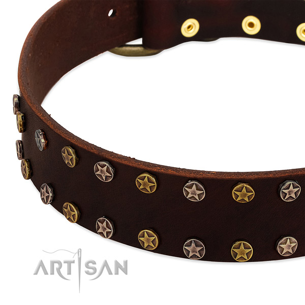 Handy use full grain leather dog collar with extraordinary studs