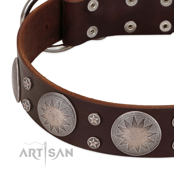 Quality natural leather dog collar with adornments for your attractive canine