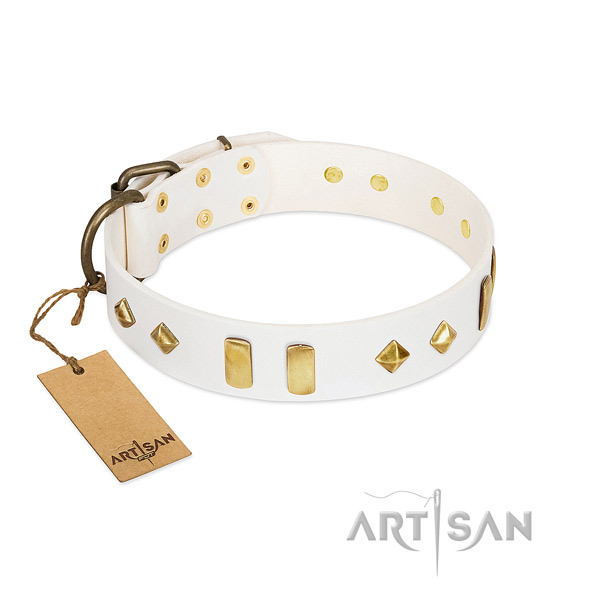 Handy use flexible full grain leather dog collar with adornments