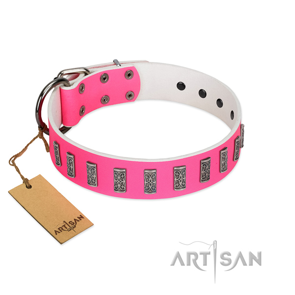 Daily use best quality full grain genuine leather dog collar with studs