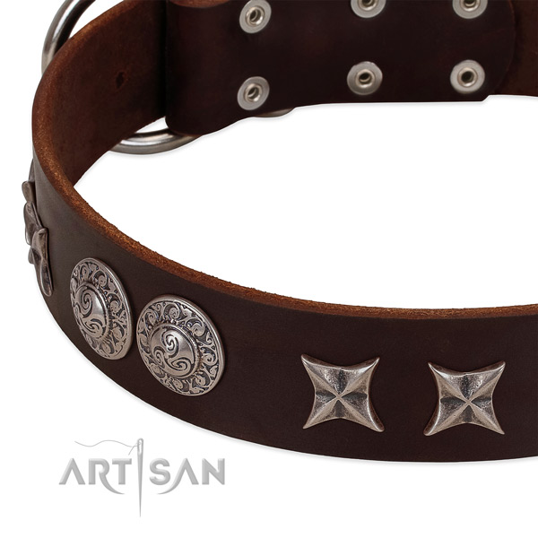 Remarkable leather dog collar with reliable traditional buckle