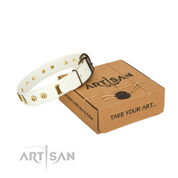 Leather dog collar with exquisite studs for everyday walking