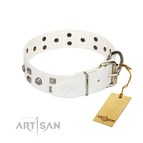 Flexible full grain genuine leather dog collar with studs for your four-legged friend