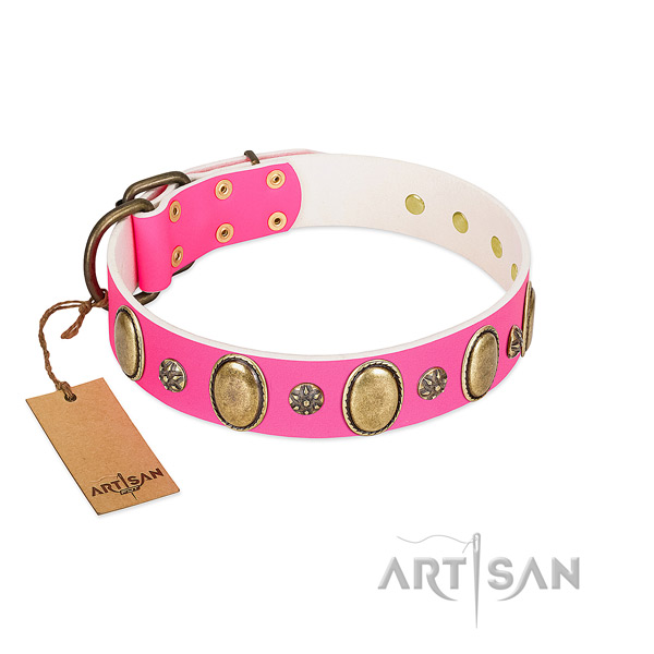 Daily use top notch genuine leather dog collar with adornments