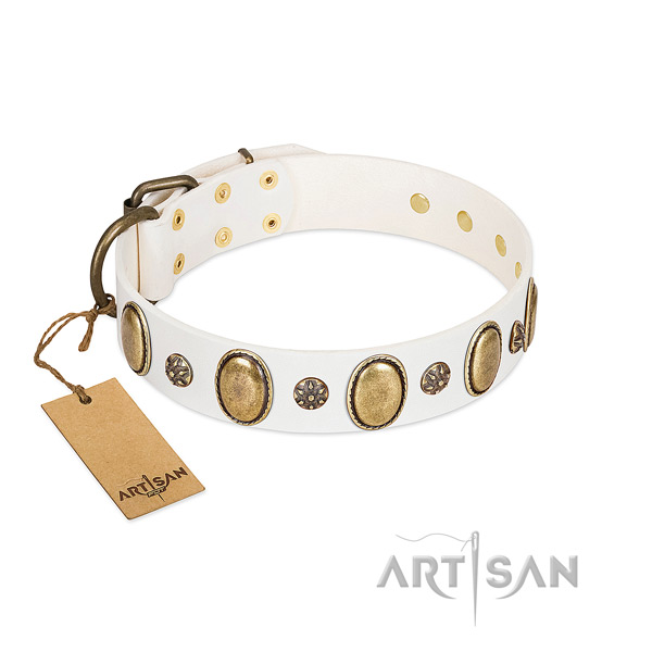 Everyday use high quality leather dog collar with adornments