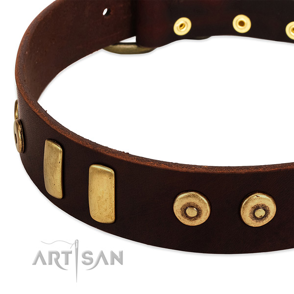Best quality natural leather collar with amazing studs for your dog