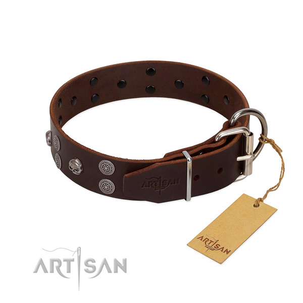 Top notch full grain genuine leather dog collar with studs for walking