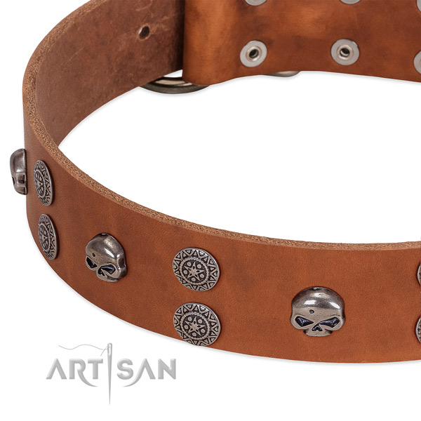 Best quality full grain natural leather dog collar with fashionable decorations