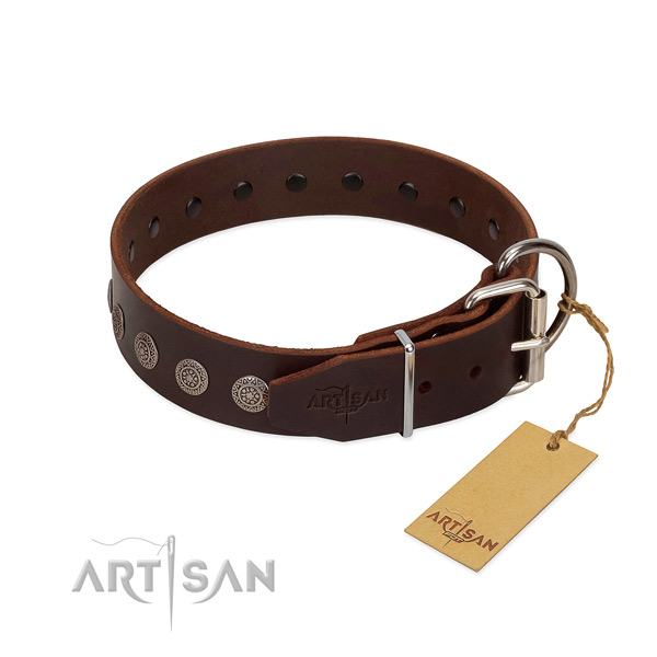 Top notch full grain leather collar for your dog