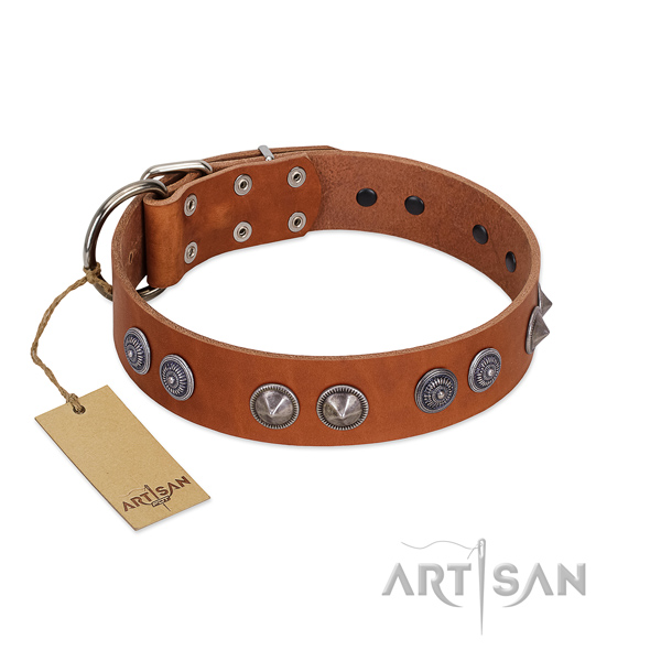 Quality leather collar with embellishments for your doggie