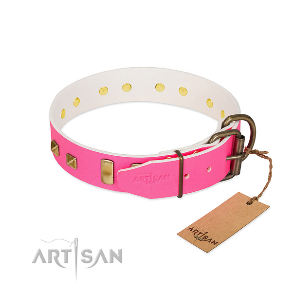 Full grain natural leather dog collar with corrosion proof studs