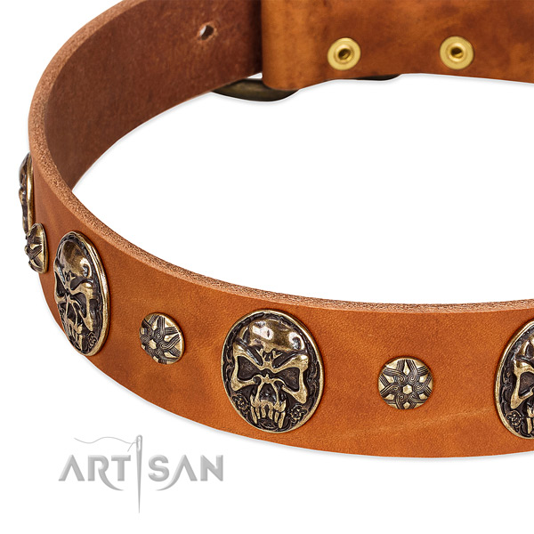 Durable fittings on natural genuine leather dog collar for your dog