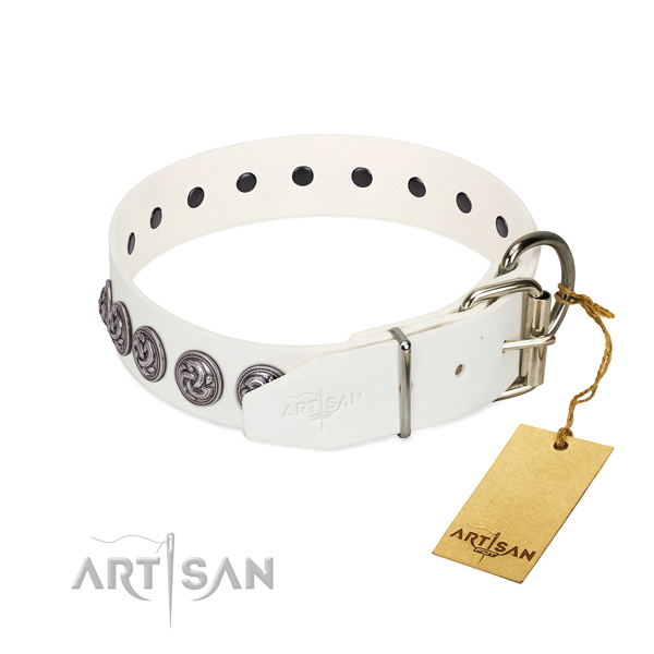 Corrosion proof buckle on genuine leather dog collar for daily walking your canine