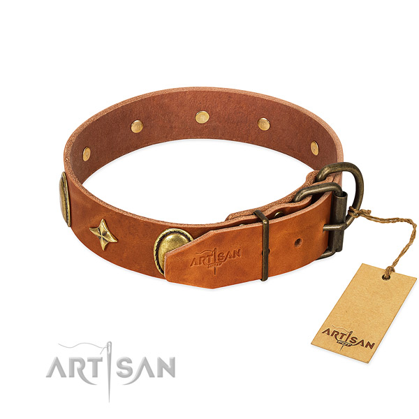 Soft full grain leather dog collar with fashionable studs