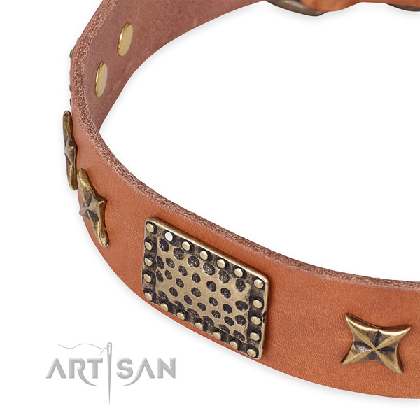 Leather collar with reliable D-ring for your lovely dog