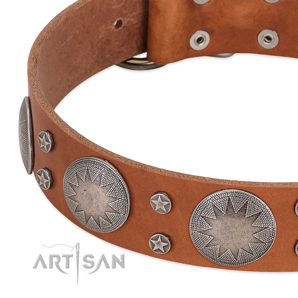 Reliable genuine leather dog collar with rust-proof traditional buckle