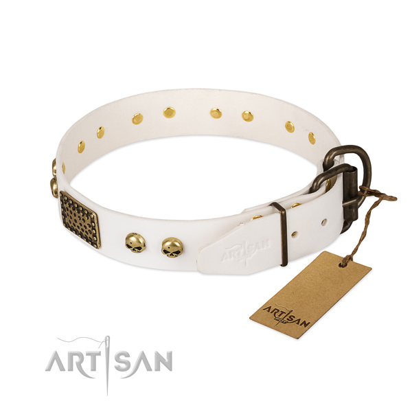 Easy wearing natural leather dog collar for everyday walking your doggie