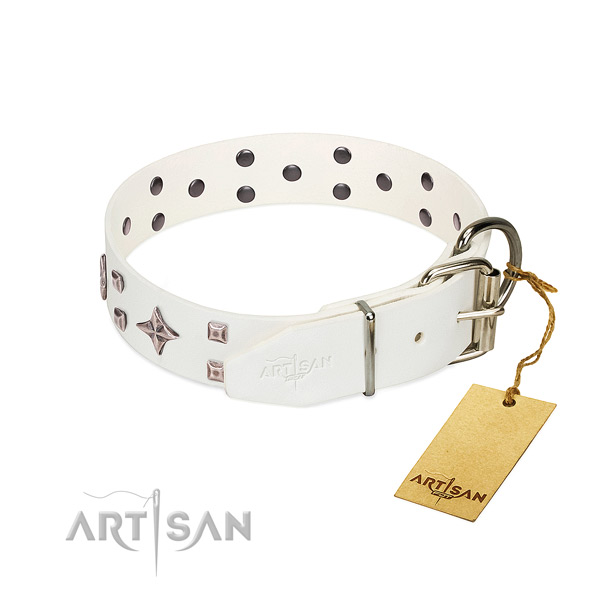 Awesome full grain genuine leather collar for your dog walking
