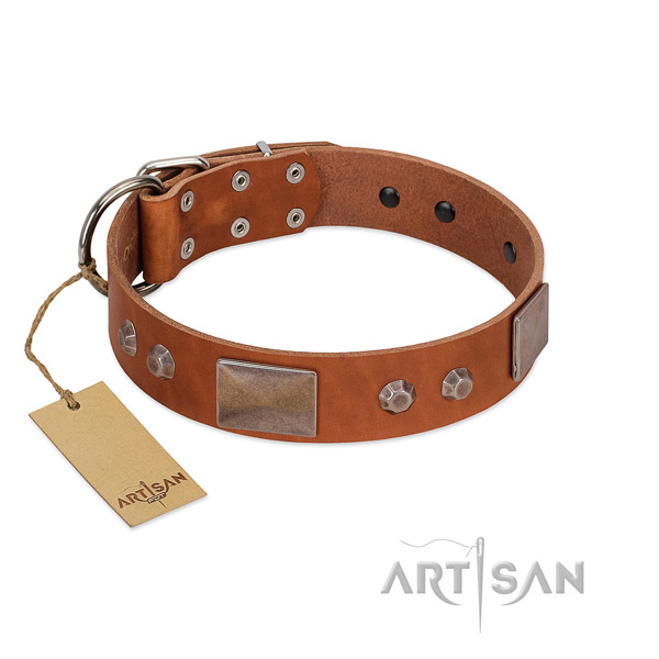 Stylish design full grain natural leather dog collar with rust-proof fittings